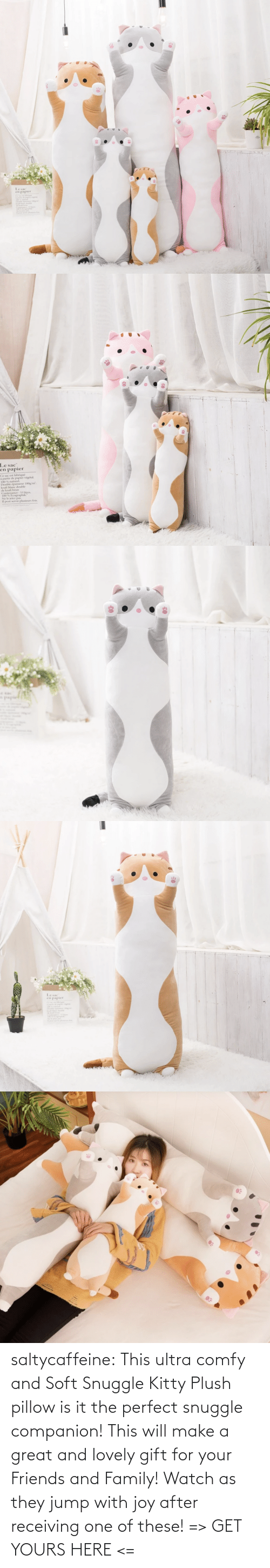 comfy: saltycaffeine: This ultra comfy and Soft Snuggle Kitty Plush pillow is it the perfect snuggle companion! This will make a great and lovely gift for your Friends and Family! Watch as they jump with joy after receiving one of these! => GET YOURS HERE <=