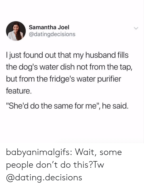 "Dating, Dogs, and Tumblr: Samantha Joel  @datingdecisions  I just found out that my husband fills  the dog's water dish not from the tap,  but from the fridge's water purifier  feature.  She'd do the same for me"", he said. babyanimalgifs:  Wait, some people don't do this?Tw @dating.decisions"