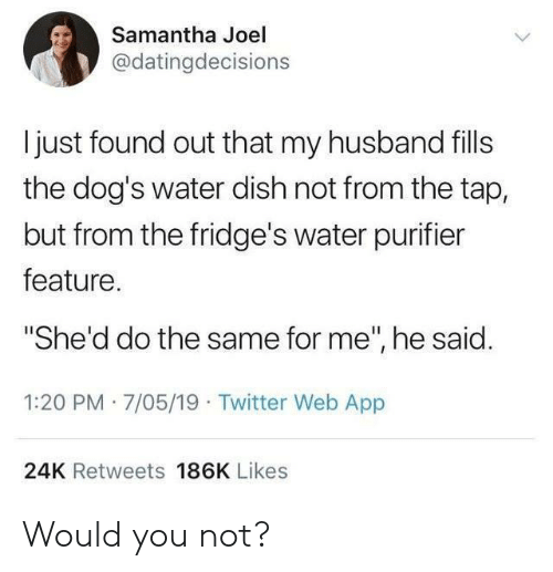 "joel: Samantha Joel  @datingdecisions  I just found out that my husband fills  the dog's water dish not from the tap,  but from the fridge's water purifier  feature.  ""She'd do the same for me"", he said.  1:20 PM 7/05/19 Twitter Web App  24K Retweets 186K Likes Would you not?"