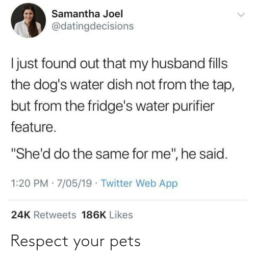 """Dogs, Respect, and Twitter: Samantha Joel  @datingdecisions  I just found out that my husband fills  the dog's water dish not from the tap,  but from the fridge's water purifier  feature.  """"She'd do the same for me"""", he said.  1:20 PM · 7/05/19 · Twitter Web App  24K Retweets 186K Likes Respect your pets"""