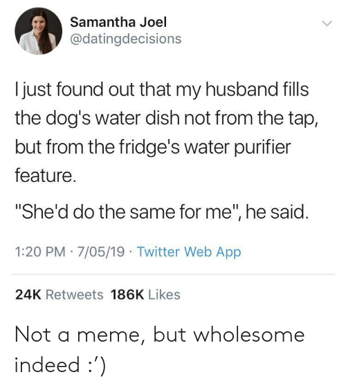 """24K: Samantha Joel  @datingdecisions  l just found out that my husband fills  the dog's water dish not from the tap,  but from the fridge's water purifier  feature  """"She'd do the same for me"""", he said  1:20 PM 7/05/19 Twitter Web App  24K Retweets 186K Likes Not a meme, but wholesome indeed :')"""