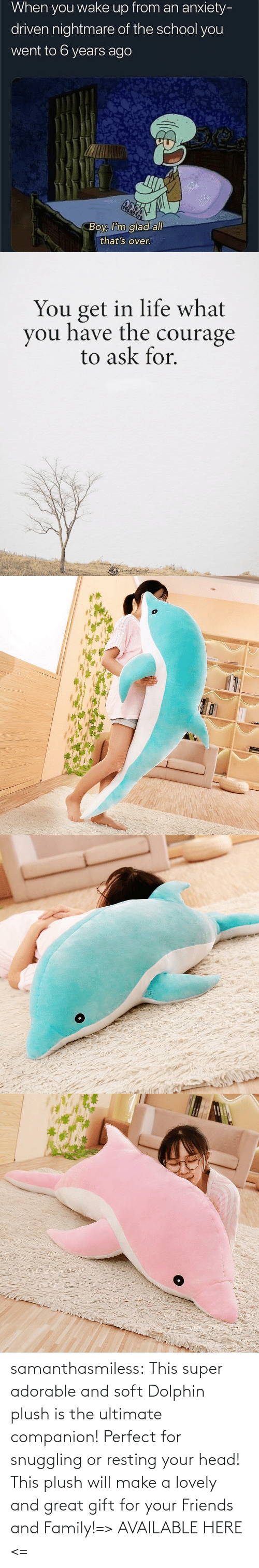 head: samanthasmiless:  This super adorable and soft Dolphin plush is the ultimate companion! Perfect for snuggling or resting your head! This plush will make a lovely and great gift for your Friends and Family!=> AVAILABLE HERE <=