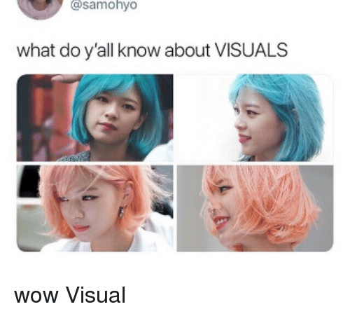 Wow, What, and Visual: @samohyo  what do y'all know about VISUALS wow Visual