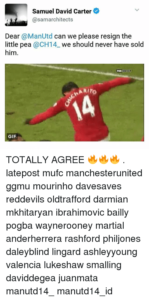 Resignated: Samuel David Carter  @samarchitects  Dear @ManUtd can we please resign the  little pea @CH14 we should never have sold  him.  RITO  GIF TOTALLY AGREE 🔥🔥🔥 . latepost mufc manchesterunited ggmu mourinho davesaves reddevils oldtrafford darmian mkhitaryan ibrahimovic bailly pogba waynerooney martial anderherrera rashford philjones daleyblind lingard ashleyyoung valencia lukeshaw smalling daviddegea juanmata manutd14_ manutd14_id