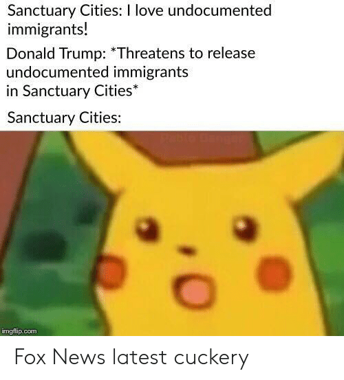 Donald Trump, Love, and News: Sanctuary Cities: I love undocumented  immigrants!  Donald Trump: Threatens to release  undocumented immigrants  in Sanctuary Cities*  Sanctuary Cities:  mgflip.com Fox News latest cuckery