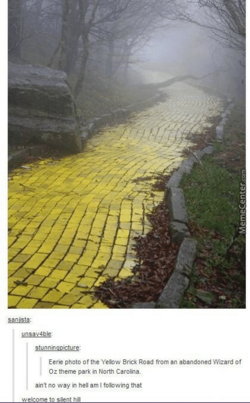 North Carolina, Wizard of Oz, and Hell: sanista  unsav4ble  Eerie photo of the Yellow Brick Road from an abandoned Wizard of  Oz theme park in North Carolina.  ain't no way in hell amI following that