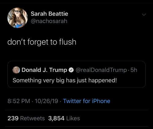 Iphone, Twitter, and Trump: Sarah Beattie  @nachosarah  don't forget to flush  @realDonaldTrump 5h  Donald J. Trump  Something very big has just happened!  8:52 PM 10/26/19 Twitter for iPhone  239 Retweets 3,854 Likes