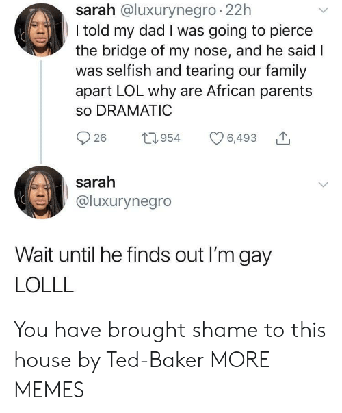 Dad, Dank, and Family: sarah @luxurynegro 22h  I told my dad I was going to pierce  the bridge of my nose, and he said I  was selfish and tearing our family  apart LOL why are African parents  so DRAMATIC  26 1954 6,493  sarah  @luxurynegro  Wait until he finds out I'm gay  LOLLL You have brought shame to this house by Ted-Baker MORE MEMES