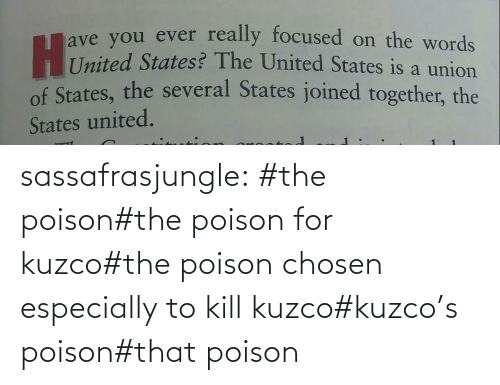 Http: sassafrasjungle:  #the poison#the poison for kuzco#the poison chosen especially to kill kuzco#kuzco's poison#that poison
