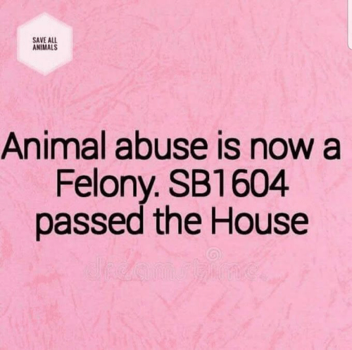 Animal Abuse: SAVE ALL  ANIMALS  Animal abuse is now a  Felony. SB1604  passed the House
