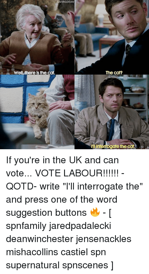"""Intell: SAVING DEAN  Well,there Is the cat,  The cat?  III Intel  the cat. If you're in the UK and can vote... VOTE LABOUR!!!!!! - QOTD- write """"I'll interrogate the"""" and press one of the word suggestion buttons 🔥 - [ spnfamily jaredpadalecki deanwinchester jensenackles mishacollins castiel spn supernatural spnscenes ]"""