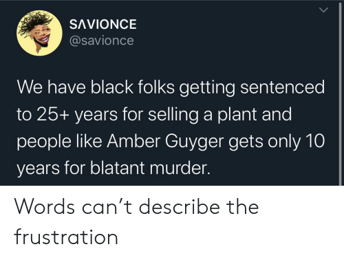 Black, Murder, and 25 Years: SAVIONCE  @savionce  We have black folks getting sentenced  to 25+ years for selling a plant and  people like Amber Guyger gets only 10  years for blatant murder Words can't describe the frustration