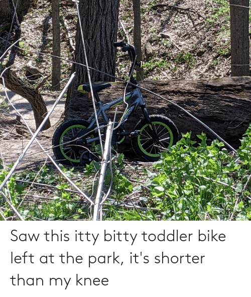 toddler: Saw this itty bitty toddler bike left at the park, it's shorter than my knee