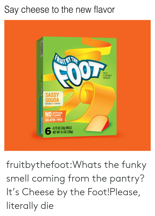 Smell, Tumblr, and Blog: Say cheese to the new flavor  FRUIT  FLAVORED  SNACKS  SASSY  GOUDA  NATURALLY FLAVORED  ARTIFICIAL  FLAVORS  GELATIN FREE  -0.75 02 (21g) ROLLS  NET WT 4.5 02 (128g) fruitbythefoot:Whats the funky smell coming from the pantry? It's Cheese by the Foot!Please, literally die