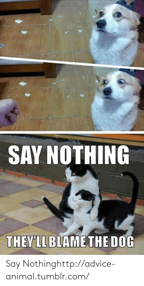 Say Nothing: Say Nothinghttp://advice-animal.tumblr.com/