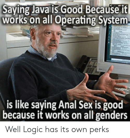 operating system: Saying Java is. Good Because 1t  works on all Operating System  is like saying Anal Sex is good  because it works on all genders Well Logic has its own perks