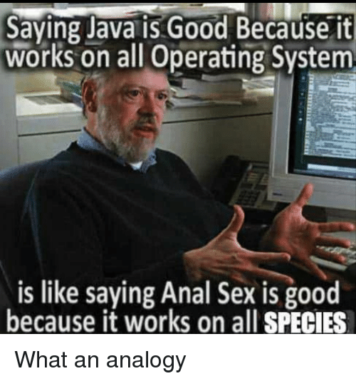 operating system: Saying Java is Good Because it  works on all Operating System  is like saying Anal Sex is good  because it works on all SPECIES What an analogy