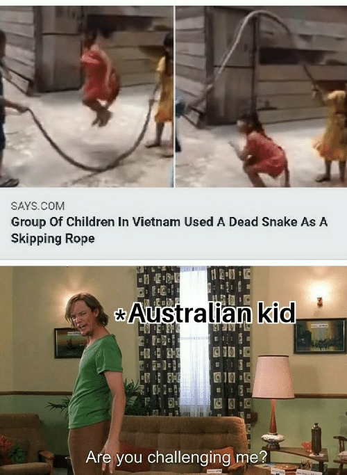 Vietnam: SAYS.COM  Group Of Children In Vietnam Used A Dead Snake As A  Skipping Rope  Australian kid  Are you challenging me?