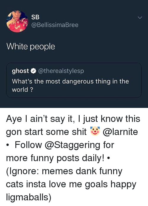 Dangerous Thing: SB  @BellissimaBree  White people  ghost @therealstylesp  What's the most dangerous thing in the  world? Aye I ain't say it, I just know this gon start some shit 🤡 @larnite • ➫➫➫ Follow @Staggering for more funny posts daily! • (Ignore: memes dank funny cats insta love me goals happy ligmaballs)