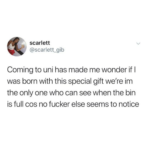 gib: scarlett  @scarlett_gib  Coming to uni has made me wonder if I  was born with this special gift we're im  the only one who can see when the bin  is full cos no fucker else seems to notice