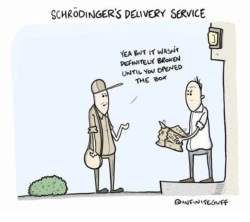 Box, The Box, and Service: SCHRODINGERS DELIVERY SERVICE  YEA BUT IT WASNT  PEFINITELY BRoKEN  UNTIL You OPENED  THE BOX
