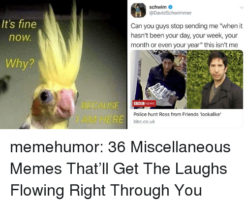 "flowing: schwim  @DavidSchwimmer  It's fine  now  Can you guys stop sending me ""when it  hasn't been your day, your week, your  month or even your year"" this isn't me  Why?  ECAUSEG NEWS  IAMHERE  Police hunt Ross from Friends 'lookalike  bbc.co.uk memehumor:  36 Miscellaneous Memes That'll Get The Laughs Flowing Right Through You"