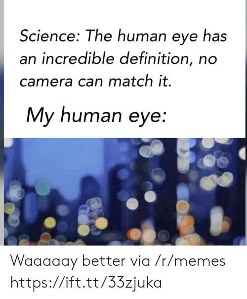 My Human: Science: The human eye has  an incredible definition, no  camera can match it.  My human eye: Waaaaay better via /r/memes https://ift.tt/33zjuka