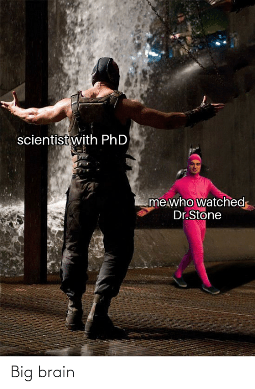 Brain, Dank Memes, and Phd: scientist with PhD  me who watched  Dr.Stone Big brain