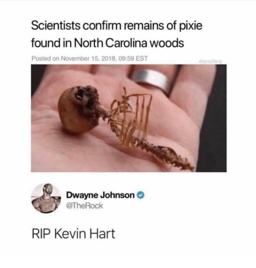 North Carolina: Scientists confirm remains of pixie  found in North Carolina woods  Posted on November 15, 2018, 09:59 EST  drgraylang  Dwayne Johnson  TheRock  RIP Kevin Hart