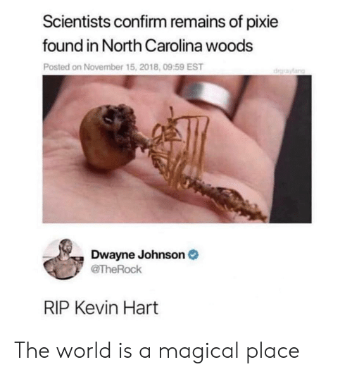 North Carolina: Scientists confirm remains of pixie  found in North Carolina woods  Posted on November 15, 2018, 09:59 EST  drayfang  Dwayne Johnson  @TheRock  RIP Kevin Hart The world is a magical place