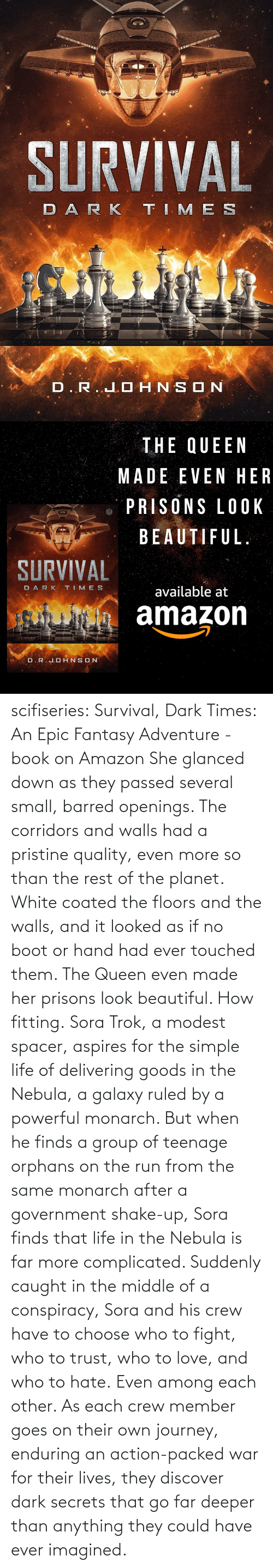 After: scifiseries: Survival, Dark Times: An Epic Fantasy Adventure - book on Amazon  She glanced down as they  passed several small, barred openings. The corridors and walls had a  pristine quality, even more so than the rest of the planet. White coated  the floors and the walls, and it looked as if no boot or hand had ever  touched them.  The Queen even made her prisons look beautiful.  How fitting. Sora  Trok, a modest spacer, aspires for the simple life of delivering goods  in the Nebula, a galaxy ruled by a powerful monarch. But when he finds a  group of teenage orphans on the run from the same monarch after a  government shake-up, Sora finds that life in the Nebula is far more complicated.  Suddenly  caught in the middle of a conspiracy, Sora and his crew have to choose  who to fight, who to trust, who to love, and who to hate. Even among each other.  As  each crew member goes on their own journey, enduring an action-packed  war for their lives, they discover dark secrets that go far deeper than  anything they could have ever imagined.