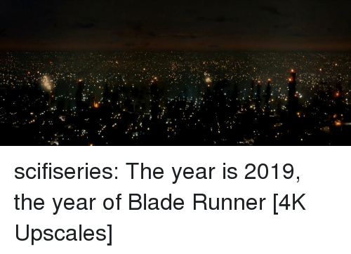 blade runner: scifiseries:  The year is 2019, the year of Blade Runner [4K Upscales]