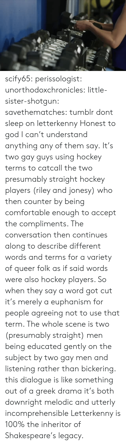 Letterkenny: scify65: perissologist:  unorthodoxchronicles:  little-sister-shotgun:  savethematches: tumblr dont sleep on letterkenny  Honest to god I can't understand anything any of them say.  It's two gay guys using hockey terms to catcall the two presumably straight hockey players (riley and jonesy) who then counter by being comfortable enough to accept the compliments. The conversation then continues along to describe different words and terms for a variety of queer folk as if said words were also hockey players. So when they say a word got cut it's merely a euphanism for people agreeing not to use that term. The whole scene is two (presumably straight) men being educated gently on the subject by two gay men and listening rather than bickering.   this dialogue is like something out of a greek drama it's both downright melodic and utterly incomprehensible   Letterkenny is 100% the inheritor of Shakespeare's legacy.