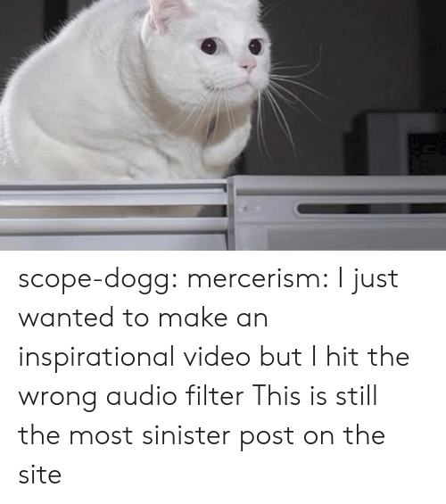 Sinister: scope-dogg: mercerism:  I just wanted to make an inspirational video but I hit the wrong audio filter   This is still the most sinister post on the site