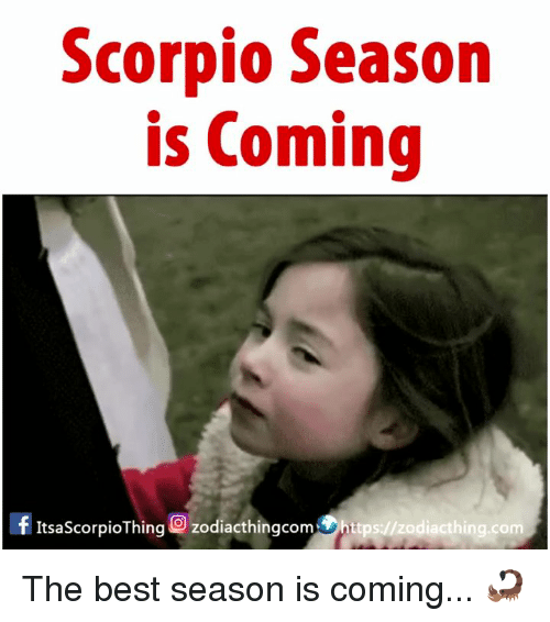 Best, Scorpio, and Com: Scorpio Season  is Coming  ItsaScorpioThing O zodiacthingcomhttps://zodiacthing.com The best season is coming... 🦂