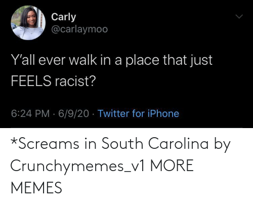 carolina: *Screams in South Carolina by Crunchymemes_v1 MORE MEMES