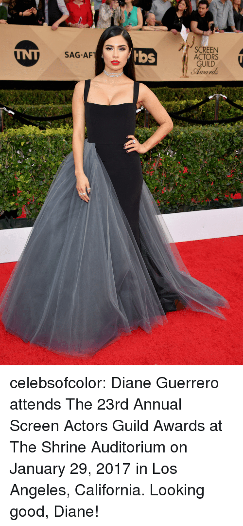 Shrine: SCREEN  ACTORS  GUILD  Award  SAG AF  bbs celebsofcolor:  Diane Guerrero attends The 23rd Annual Screen Actors Guild Awards at The Shrine Auditorium on January 29, 2017 in Los Angeles, California.  Looking good, Diane!