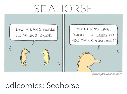 "Target, Tumblr, and Blog: SEAHORSE  AND I WAS LIKE,  ISAW A LAND HORSE  ""WHO THE FUCK D0  SWIMMING ONCE  YoU THINK YOU ARE?"".  poorlydrawnlines.com pdlcomics: Seahorse"