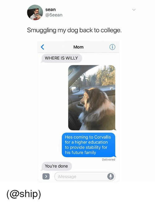 College, Family, and Future: sean  @5eean  Smuggling my dog back to college.  Mom  WHERE IS WILLY  Hes coming to Corvallis  for a higher education  to provide stability for  his future family  Delivered  You're done  Message (@ship)