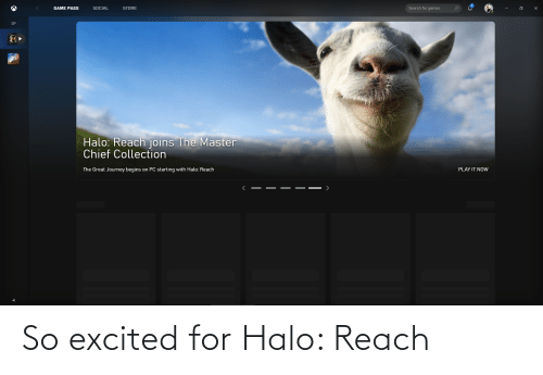 Chief Collection: Search for games  GAME PASS  SOCIAL  STORE  Halo: Reach joins The Master  Chief Collection  The Great Journey begins on PC starting with Halo: Reach  PLAY IT NOW So excited for Halo: Reach