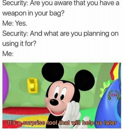 Tool That: Security:  Are  you aware you a  that  have  weapon in your bag?  Me: Yes.  Security: And what are you planning on  using it for?  Me:  eIt's a surprise tool that yl help us later  nat vyll help  later  lt's a  0