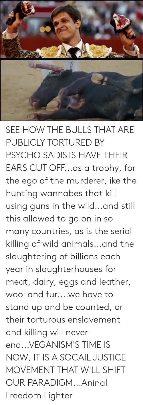 Animals, Guns, and Memes: SEE HOW THE BULLS THAT ARE PUBLICLY TORTURED BY PSYCHO SADISTS HAVE THEIR EARS CUT OFF...as a trophy, for the ego of the murderer, ike the hunting wannabes that kill using guns in the wild...and still this allowed to go on in so many countries, as is the serial killing of wild animals...and the slaughtering of billions each year in slaughterhouses for meat, dairy, eggs and leather, wool and fur....we have to stand up and be counted, or their torturous enslavement and killing will never end...VEGANISM'S TIME IS NOW, IT IS A SOCAIL JUSTICE MOVEMENT THAT WILL SHIFT OUR PARADIGM...Aninal Freedom Fighter