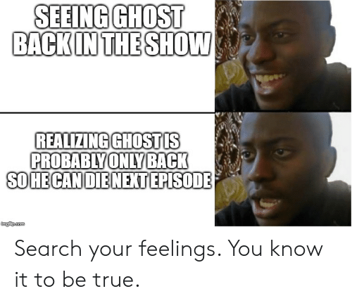 True, Ghost, and Search: SEEING GHOST  BACKIN THE SHOW  REALIZING GHOSTIS  PROBABIY  ONLY BACK  SO HE CANOIENEXT EPISODE  imgfip.com Search your feelings. You know it to be true.