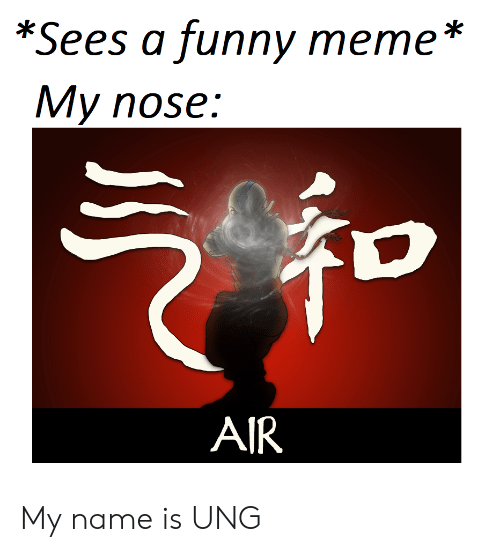 Funny, Meme, and Air: *Sees a funny meme *  My nose:  AIR My name is UNG