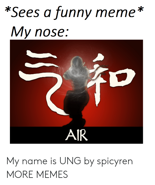 Dank, Funny, and Meme: *Sees a funny meme *  My nose:  AIR My name is UNG by spicyren MORE MEMES