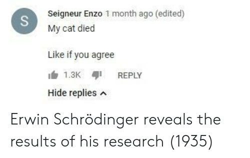 Like If You: Seigneur Enzo 1 month ago (edited)  My cat died  Like if you agree  REPLY  Hide replies n Erwin Schrödinger reveals the results of his research (1935)