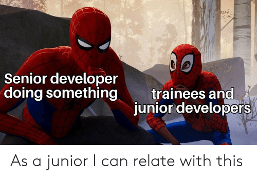Can, Junior, and Developer: Senior developer  doing something  trainees and  junior developers As a junior I can relate with this