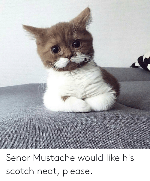 Scotch, Neat, and Please: Senor Mustache would like his scotch neat, please.