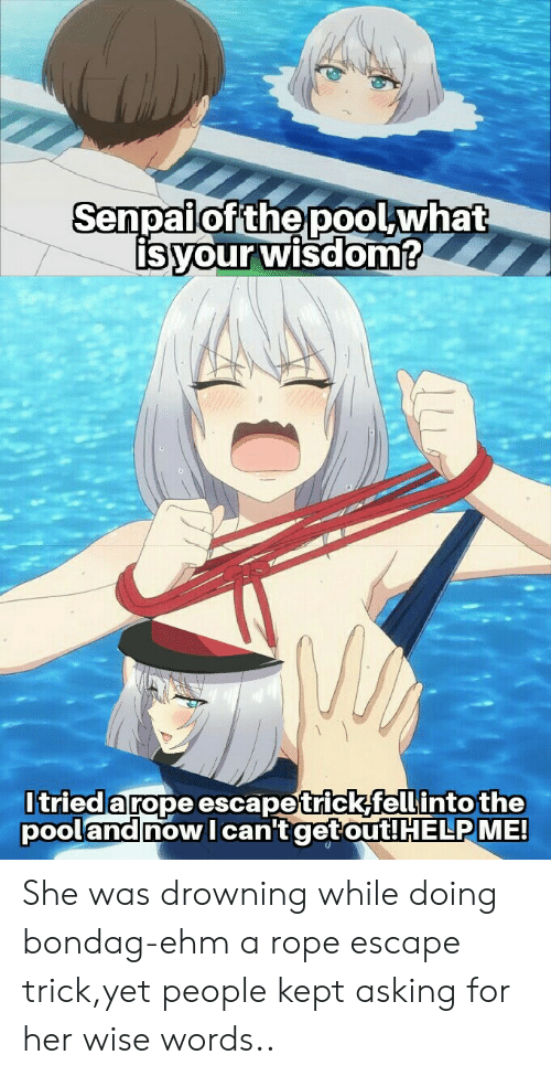 Anime, Wisdom, and Asking: Senpaiof the poolwhat  isyour wisdom?  Itrieda rope escapetrick,fell into the  pooland now can't get out! HELPME! She was drowning while doing bondag-ehm a rope escape trick,yet people kept asking for her wise words..