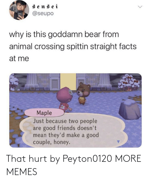 couple: sensei  @seupo  why is this goddamn bear from  animal crossing spittin straight facts  at me  Maple  Just because two people  are good friends doesn't  mean they'd make a good  couple, honey. That hurt by Peyton0120 MORE MEMES